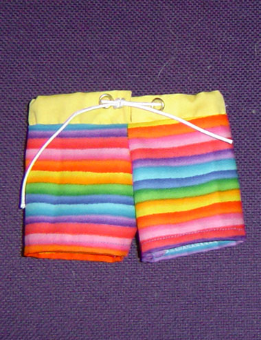 Rainbow Surfing Shorts Horizontal